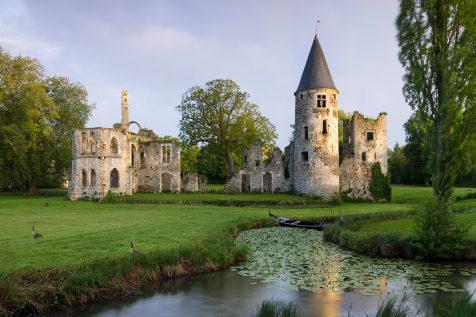 Ruines du château royal du Vivier. © David Briard