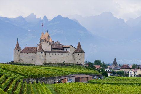 Le Château d'Aigle et son vignoble © David Briard